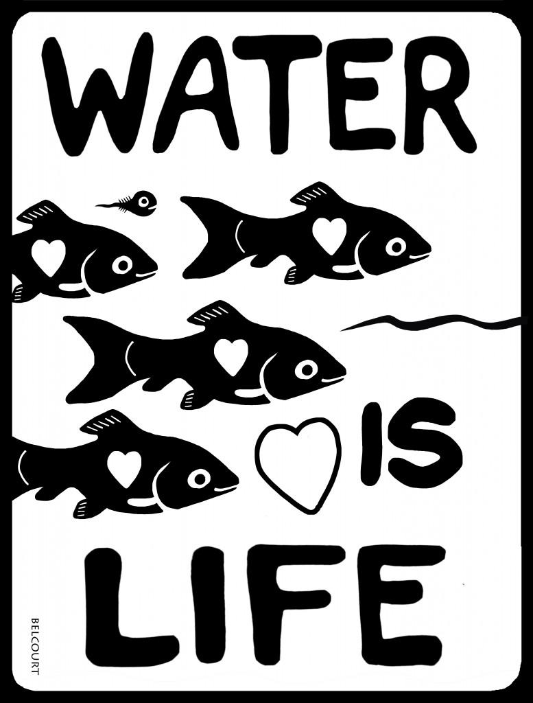 waterislifeFISH